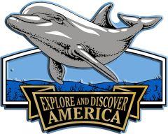 Discover & Explore America - DOLPHIN - Magneet