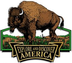 Discover & Explore America - BUFFALO - Magneet