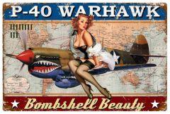 P-40 Warhawk XL